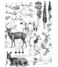 """Redesign Décor Transfers® - Deer size 23""""x 33"""""""