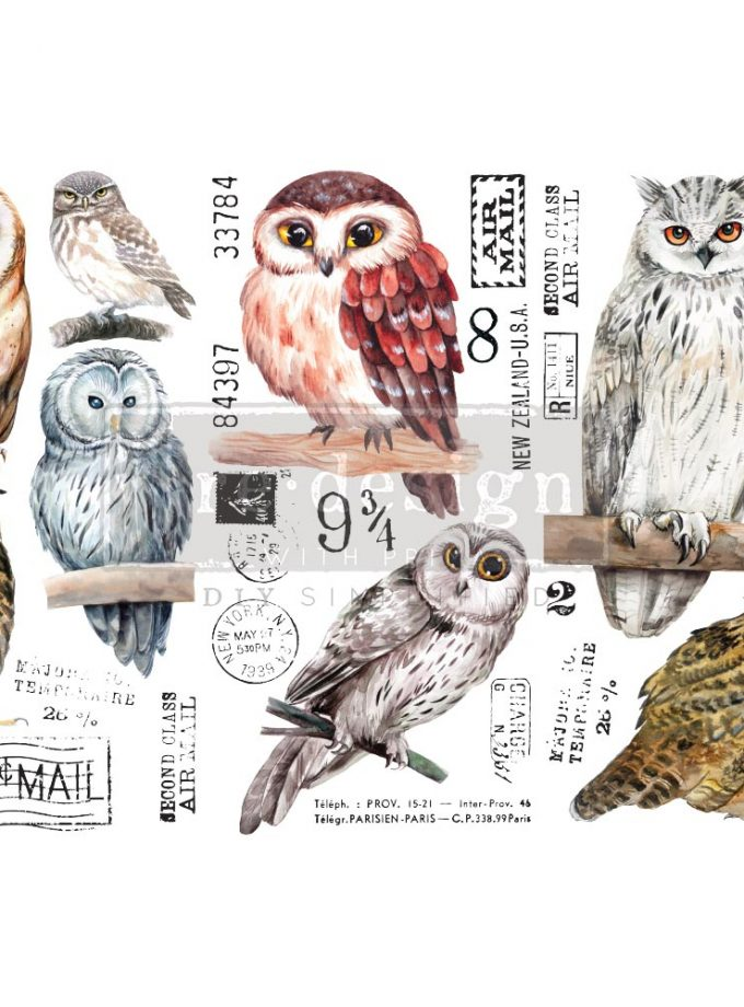 "Decor Transfers® - Owl - 3 sheets, 6""x12"""