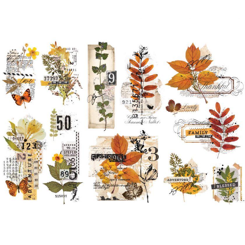 "Decor Transfers® - Foliage Collector - 3 sheets, 6""x12"""